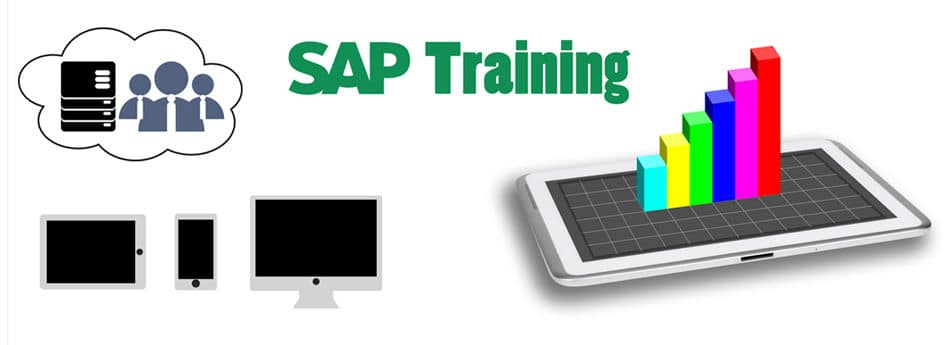 corporate sap course